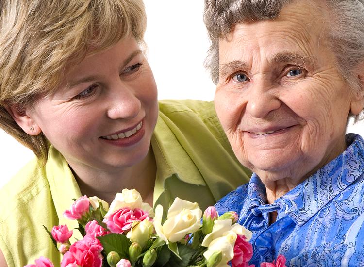 flower-visits-001