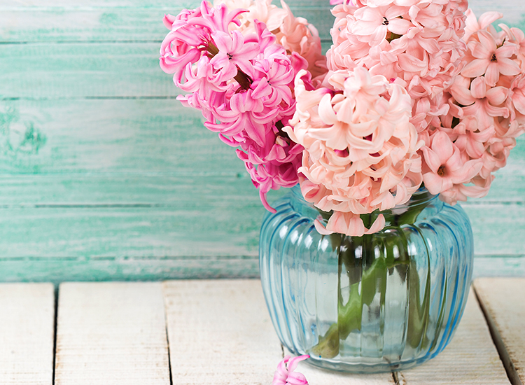 Flowers Vases Smiling Faces New Friends